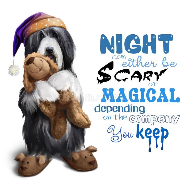 Collie barbudo en un casquillo de noche con un juguete en sus patas ilustración del vector