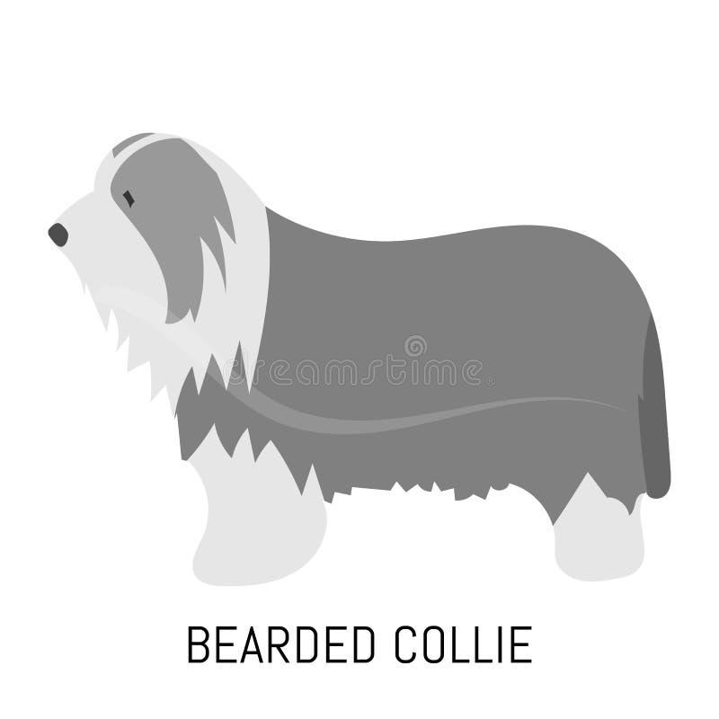 Collie barbuto Cane, icona piana Isolato su priorità bassa bianca fotografia stock libera da diritti