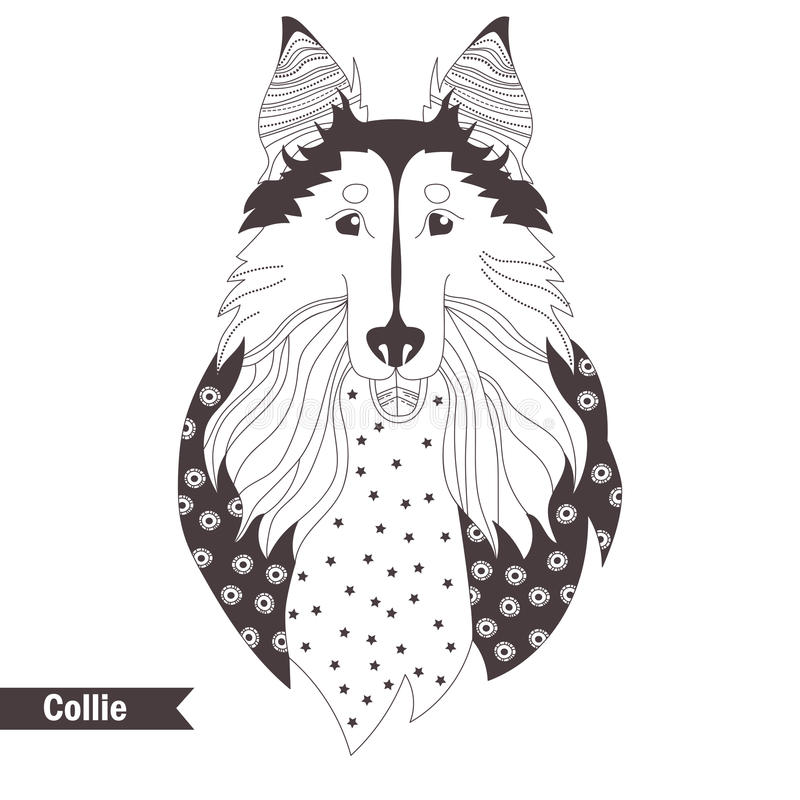 Collie. Coloring book stock illustration