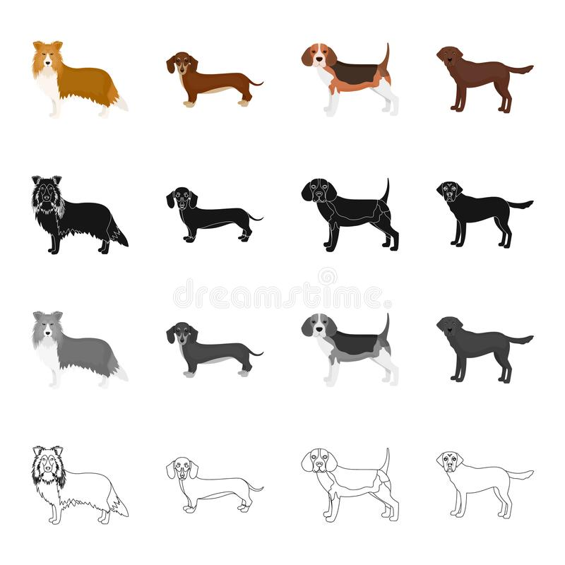 Collie, Dachshund, Spürhund und andere Netzikone in der Karikaturart Hund, Tier, inländisch, Ikonen in der Satzsammlung stock abbildung