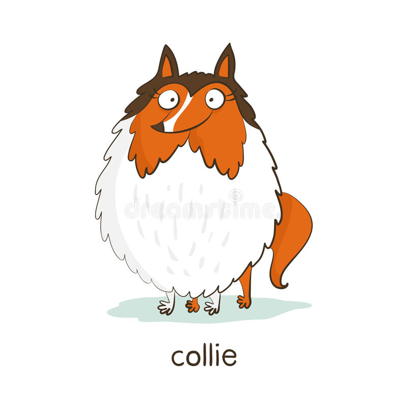 Collie. Dog character on white stock photos