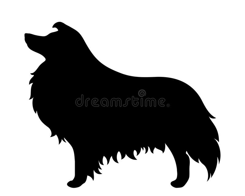 Collie dog. Vector black silhouette. vector illustration