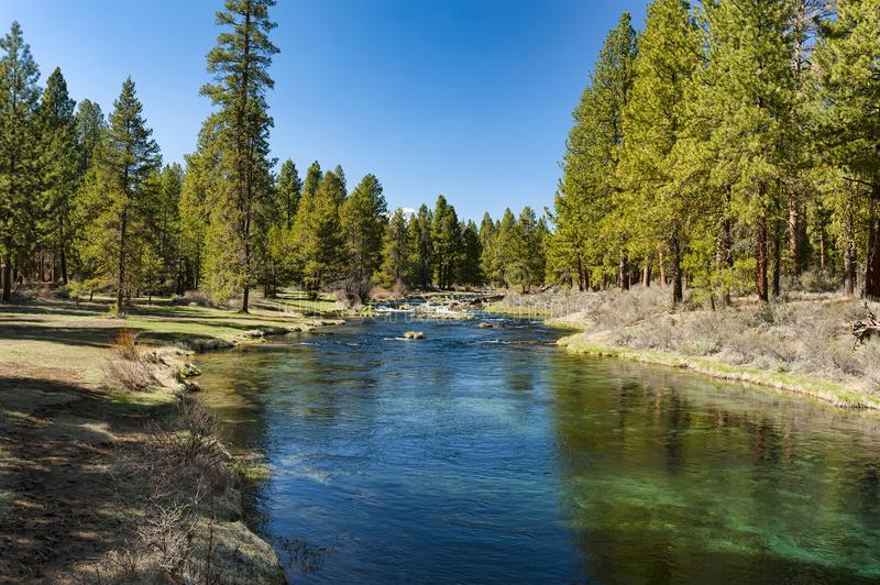 Collier Memorial Park Spring Creek. Spring Creek flows through Collier Memorial Park near Chiloquin, Oregon in the high desert country of the Klamath Basin royalty free stock photo