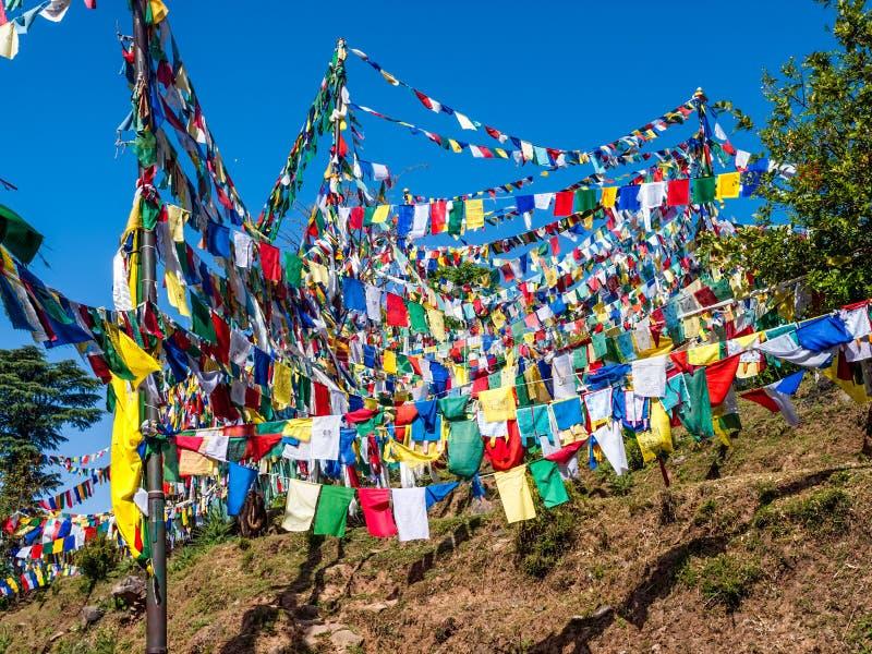 Collina con le bandierine di preghiera, Dharamsala fotografie stock libere da diritti