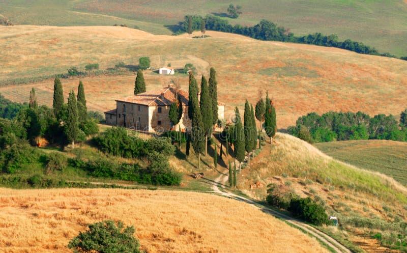 Collina del Cypress in Toscana fotografia stock