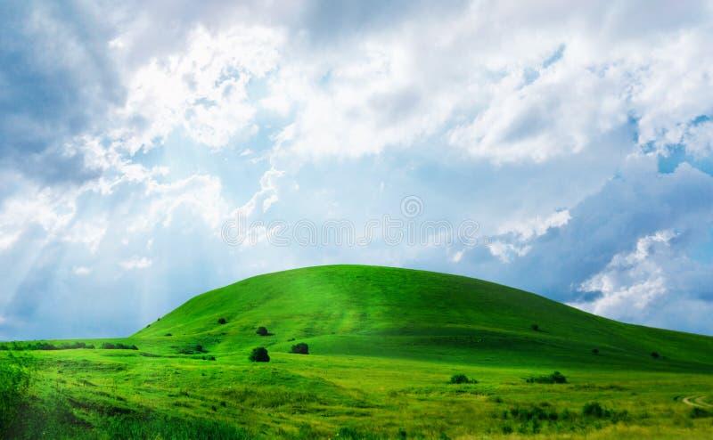 Collina dell'erba verde fotografia stock libera da diritti