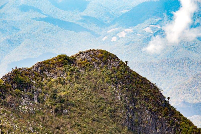 Collina della montagna nella foresta con cielo blu e la nuvola bianca per l'escursione del viaggiatore a Chiangdao, Chiangmai, Ta fotografia stock libera da diritti