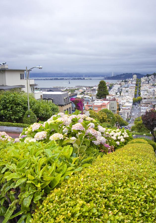 Collina russa sulla via lombarda, San Francisco, California - U.S.A. fotografia stock libera da diritti