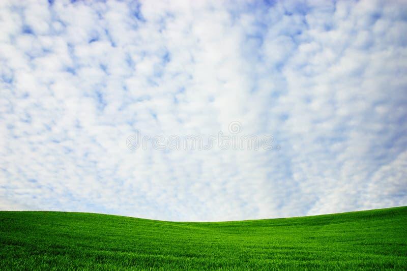 Collina verde fotografia stock libera da diritti