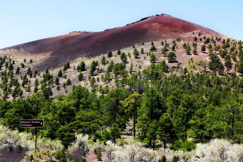 Collina vicino al cratere di tramonto in albero per bandiera Arizona immagini stock