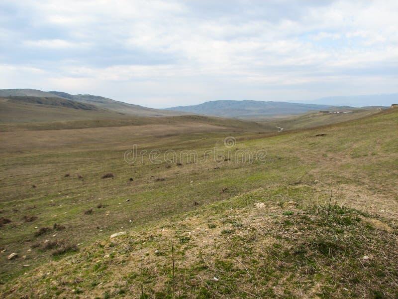 Colline couverte de l'herbe jaune sous le ciel bleu clair images libres de droits