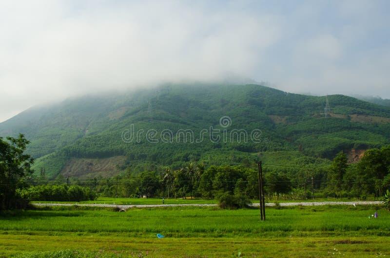 Colline couverte en brouillard au Vietnam photographie stock libre de droits