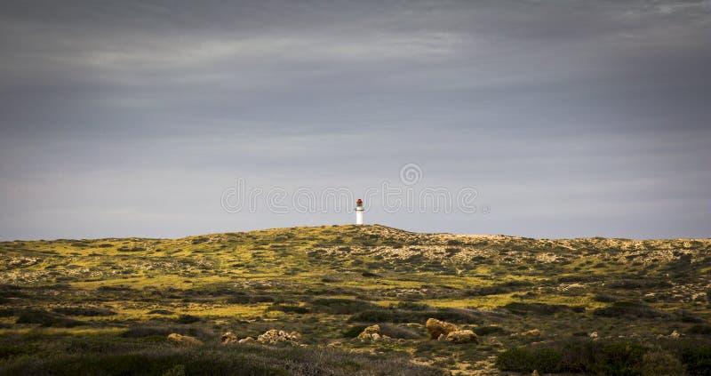 Colline d'arbuste de côte d'Australie de station de Gnaraloo de phare photos libres de droits