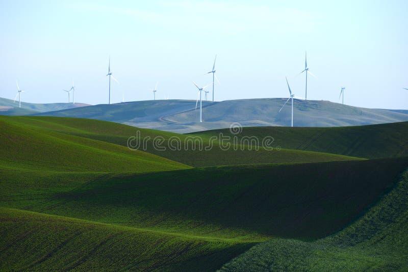 Colline de ferme de blé avec le moulin de vent images stock
