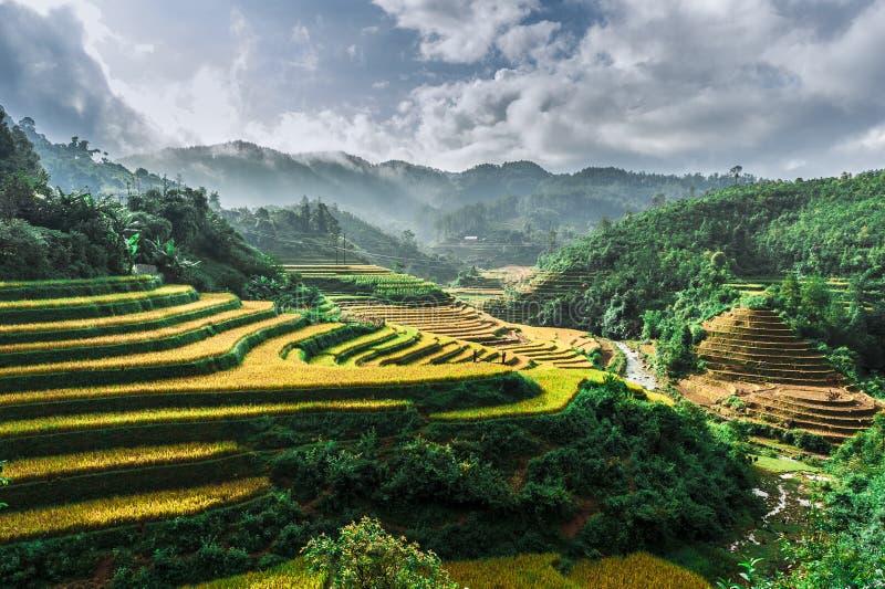 Colline dei terrazzi del riso con le montagne e le nuvole a fondo fotografie stock