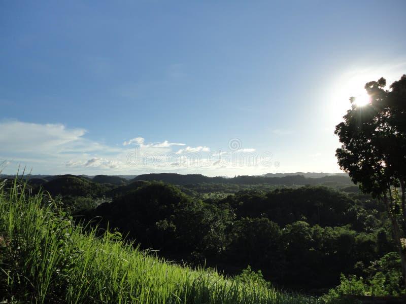 COLLINE DEL CIOCCOLATO, BOHOL, FILIPPINE immagini stock
