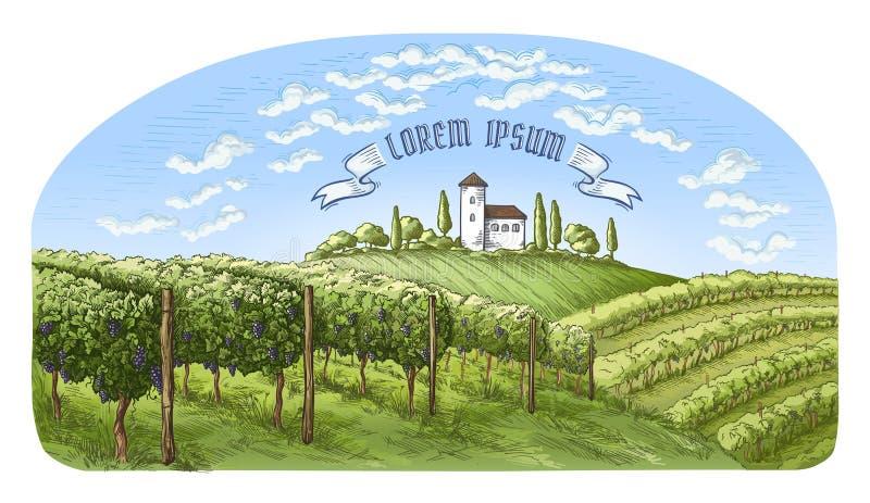 Colline della piantagione della vite di Colorfull, alberi, nuvole e castello antico sull'orizzonte illustrazione di stock