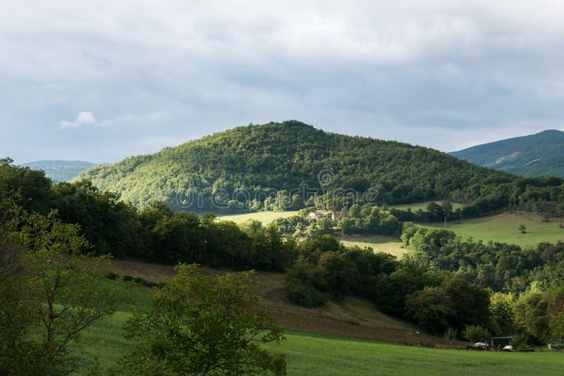 Colline della Toscana fotografia stock libera da diritti