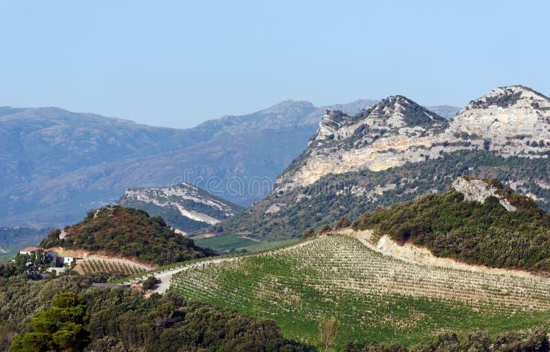 Colline di Patrimonio nell'isola di Corsica fotografia stock libera da diritti