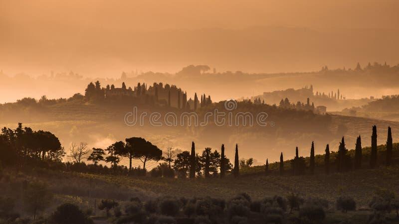 Colline e nebbia di Cypress in Toscana fotografia stock