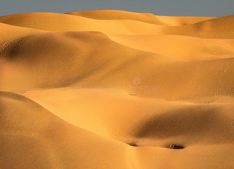 Colline e valli delle dune di sabbia non trattate fotografia stock libera da diritti