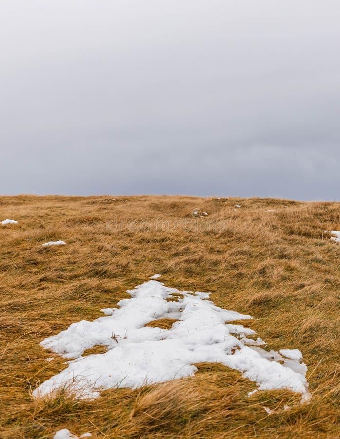 Colline et ciel d'herbe d'hiver image libre de droits