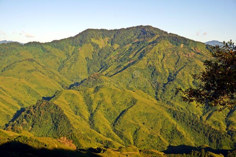 Colline fertili del Nagaland, area tribale, India di nordest immagini stock