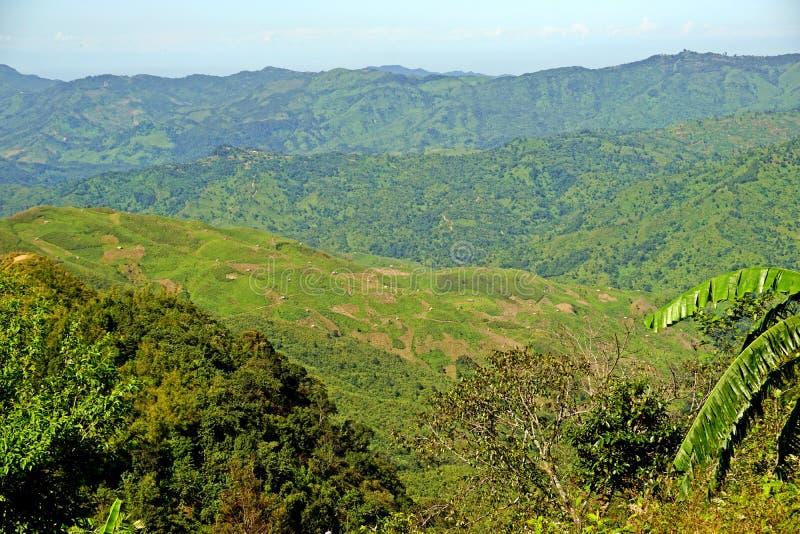 Colline fertili del Nagaland, area tribale, India di nordest immagine stock libera da diritti