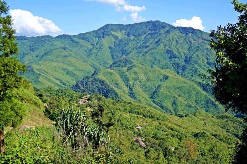 Colline fertili del Nagaland, area tribale, India di nordest fotografia stock