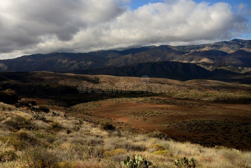 Colline pedemontana dell'Arizona fotografia stock libera da diritti