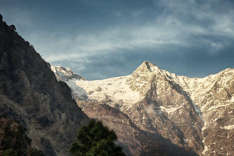Colline pedemontana dell'Himalaya in mezzo di paesaggio della molla immagini stock