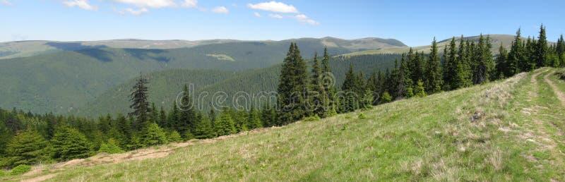 Colline, prati e foreste fotografia stock libera da diritti