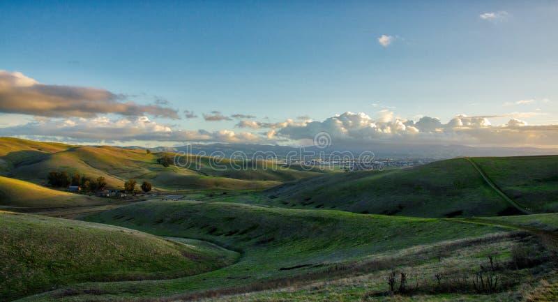 Colline regionali di punta Brushy della riserva vicino a Livermore fotografia stock