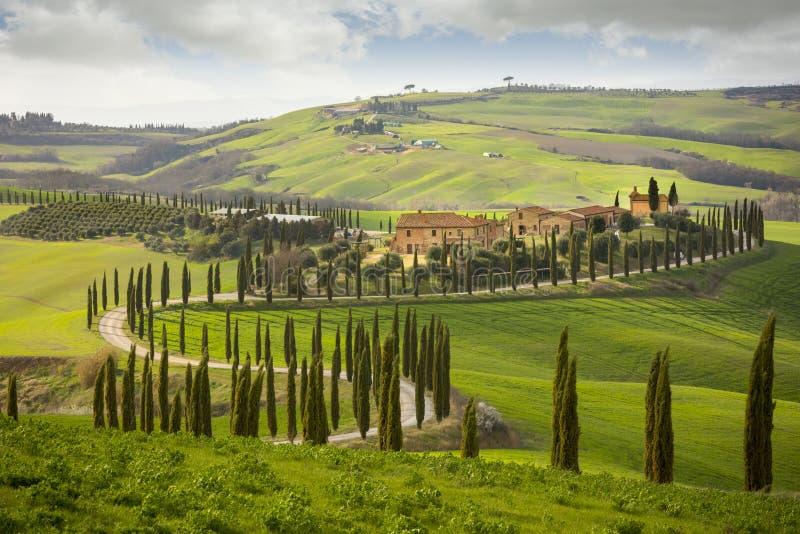 Colline toscane avec la rangée des arbres de cyprès et des fermes Horizontal toscan l'Italie photos libres de droits