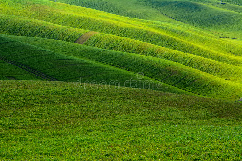 Colline verdi immagini stock