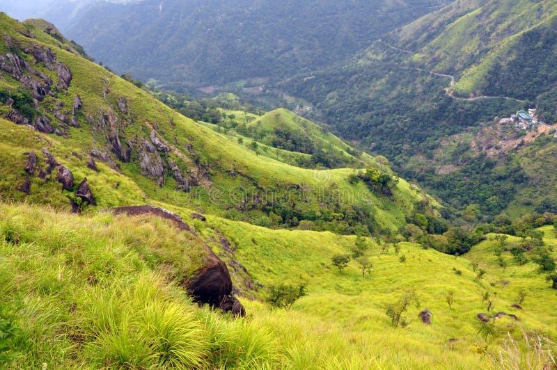 Colline verdi del paese del tè, Sri Lanka fotografia stock libera da diritti