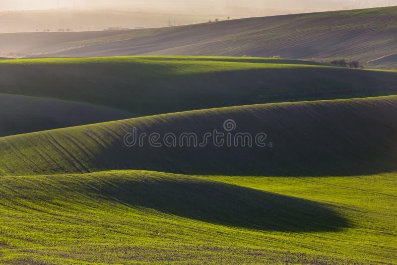 Colline verdi della Moravia fotografia stock libera da diritti