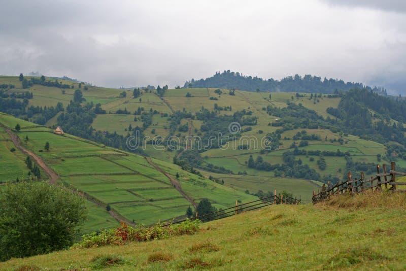 Colline verdi di Polonina Carpathians Vista della campagna fotografie stock libere da diritti