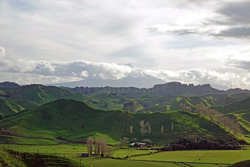 Colline verdi e Taranaki della strada principale dimenticata del mondo, Nuova Zelanda fotografia stock libera da diritti