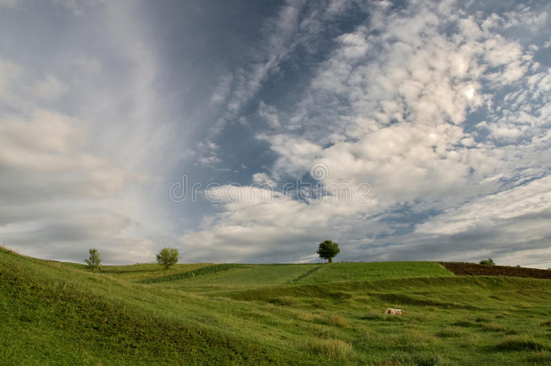 Colline verdi sotto il cielo blu e le nuvole immagine stock libera da diritti