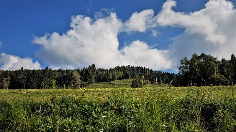 Collines autrichiennes en Styrie du nord avec le skye nuageux bleu image stock