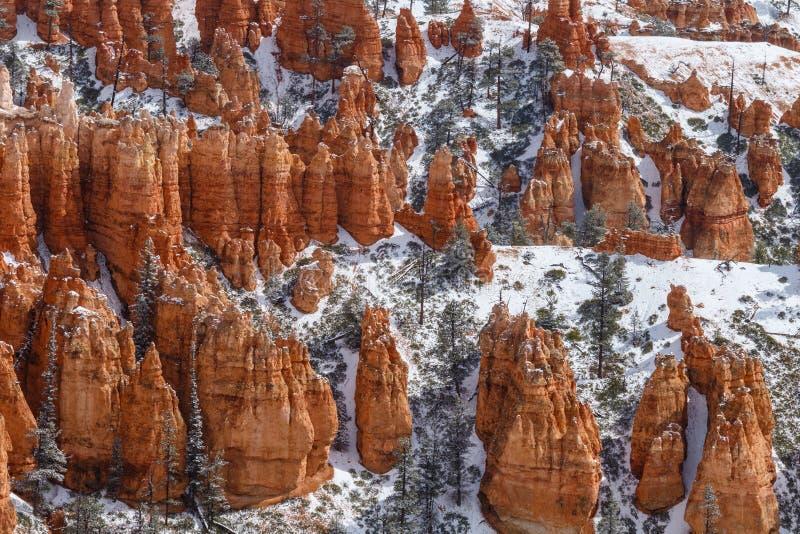 Collines couvertes de porte-malheur et de neige, Bryce Canyon, Utah photos stock