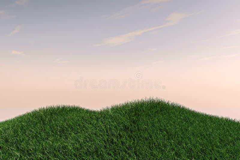Collines de champ d'herbe et ciel ouvert image stock