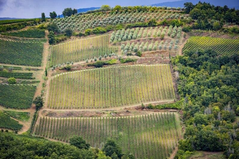 Collines de chianti avec des vignobles Paysage toscan entre Sienne et Florence l'Italie photos stock