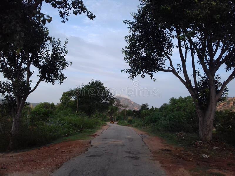 Collines de Horsley, Chittoor, Andhra Pradesh images stock