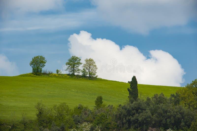 Collines de roulement de ressort et sur le ciel bleu et les nuages de fond images stock