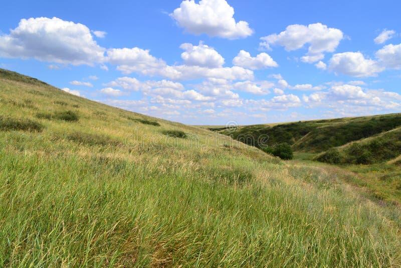Collines de steppe images stock