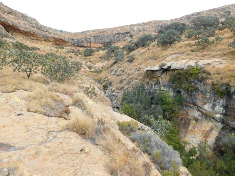 Collines de vallée images stock