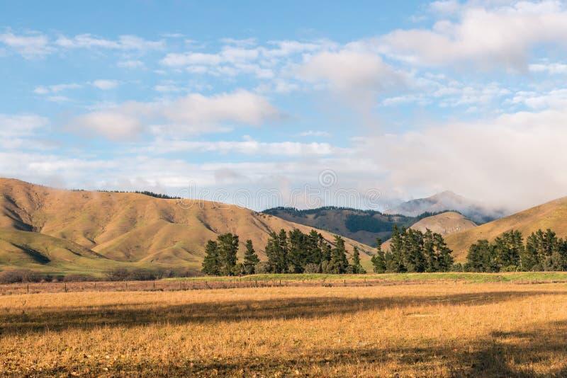 Collines de Wither près de ville de Blenheim au Nouvelle-Zélande en automne photo libre de droits