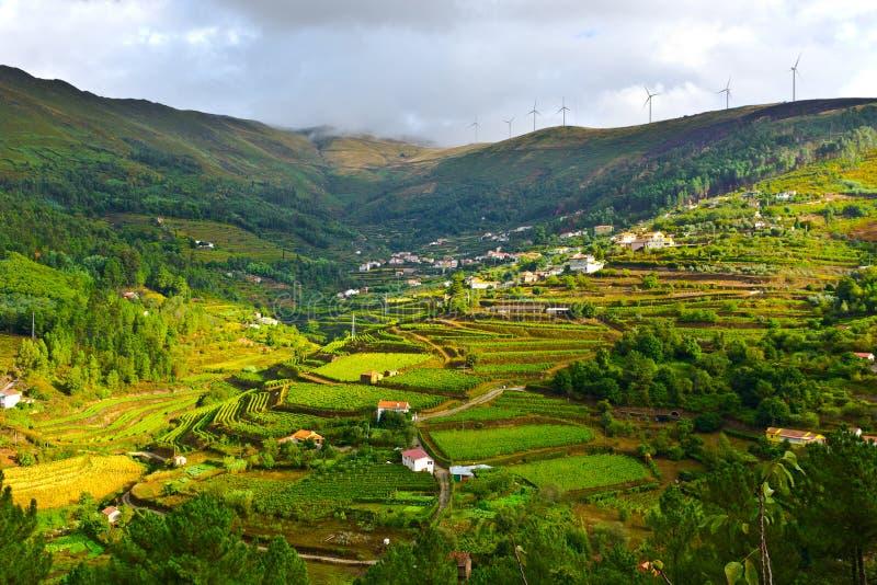Collines du Portugal images libres de droits